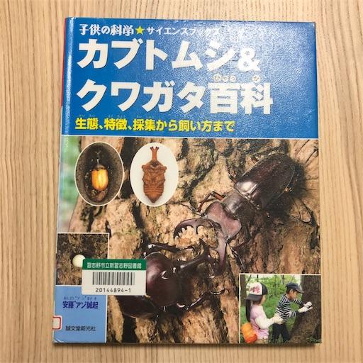 f:id:ikenagayoshie:20190627094530j:image