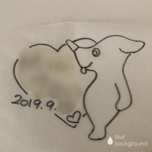 f:id:ikenagayoshie:20190917083519p:image