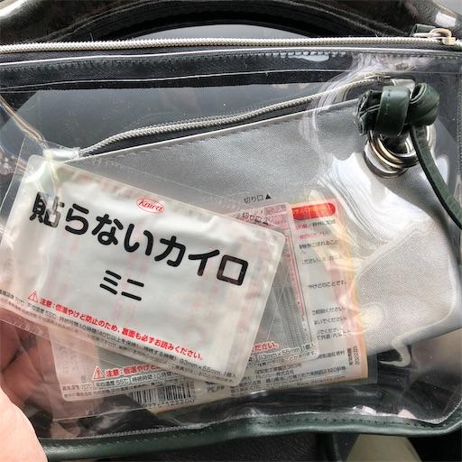 f:id:ikenagayoshie:20200112110916j:image
