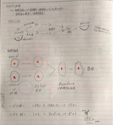 f:id:ikenagayoshie:20200215034844j:image