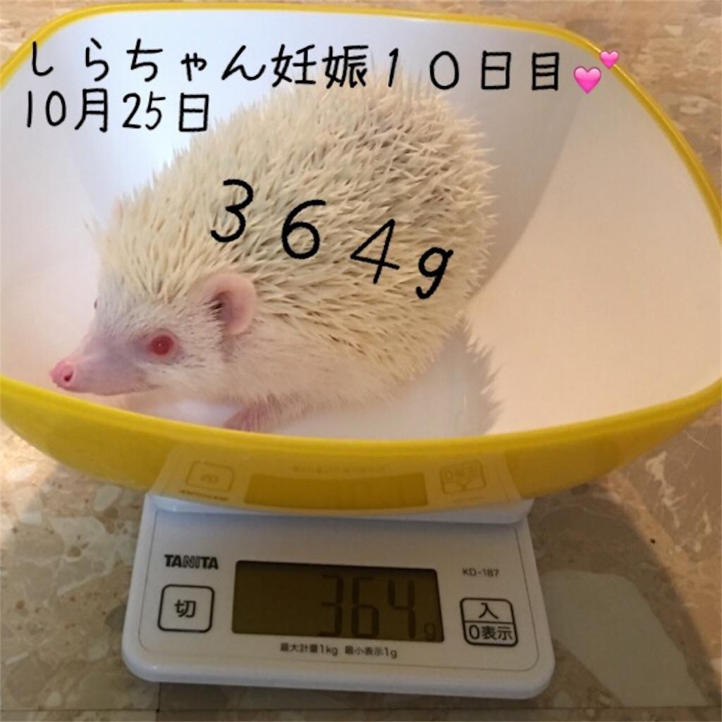 f:id:iketaro76:20161125200844j:image