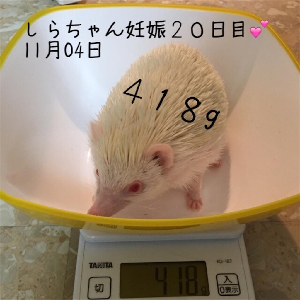 f:id:iketaro76:20161125200857j:image