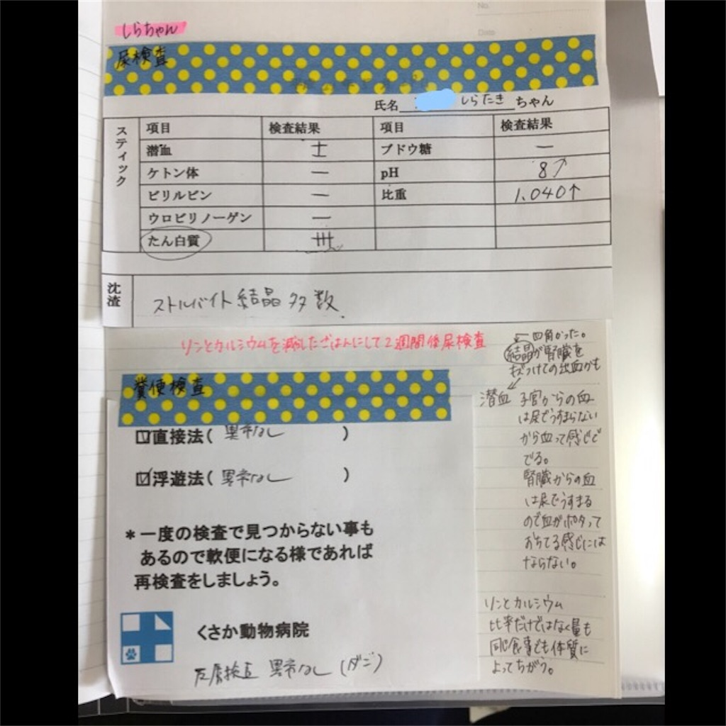 f:id:iketaro76:20170529194758j:image