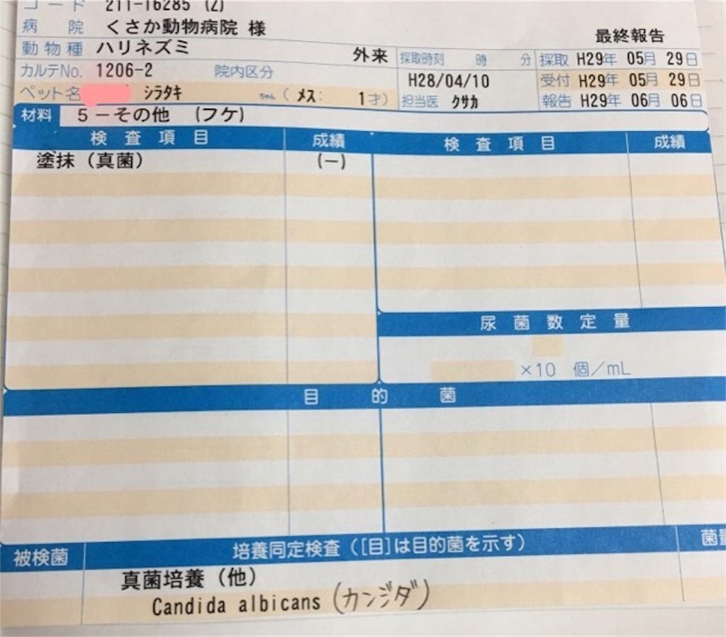 f:id:iketaro76:20170612130102j:image