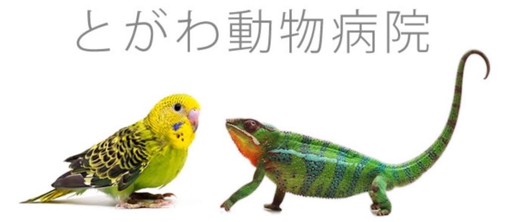 f:id:iketaro76:20170908225631j:image