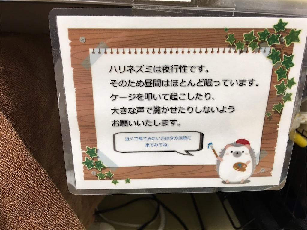 f:id:iketaro76:20171019070517j:image