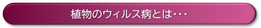 f:id:ikexk:20200120152442p:plain