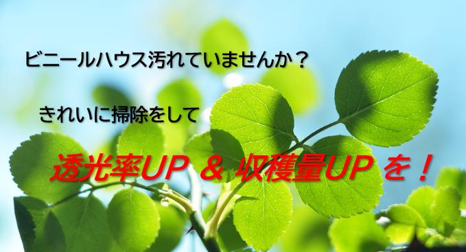 f:id:ikexk:20201021114554p:plain