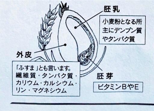 f:id:ikeyuki0712:20190616232533j:image