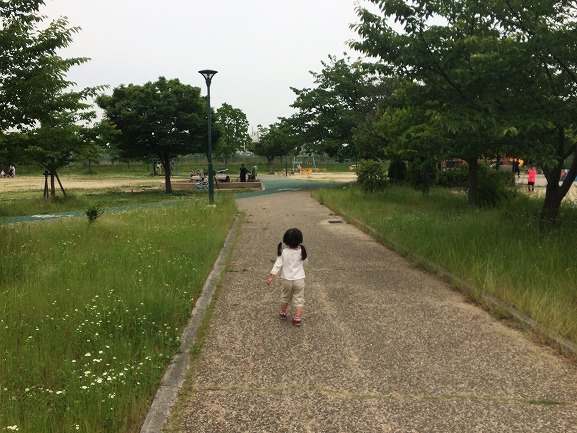 f:id:ikimasyoka:20180527002005j:plain