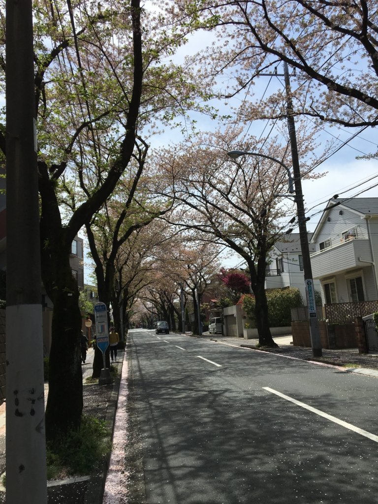 f:id:ikimonogakalee:20170416192656j:plain