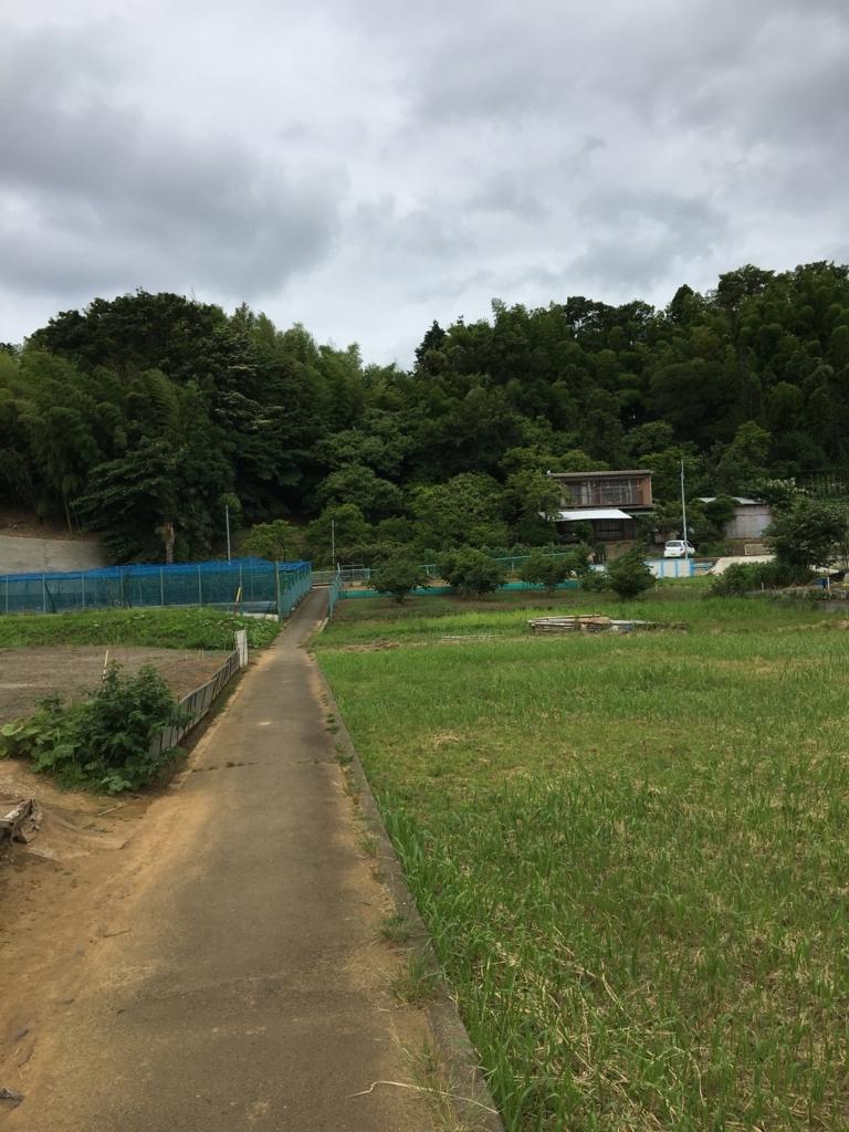 f:id:ikimonogakalee:20170618095854j:plain