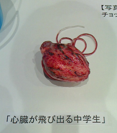 f:id:ikinarinurikabe:20170416223833j:plain