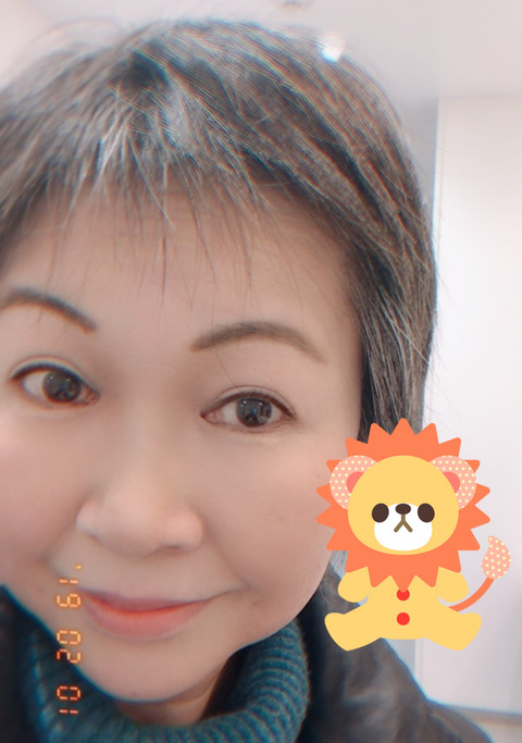 f:id:ikinarinurikabe:20190201230120j:plain