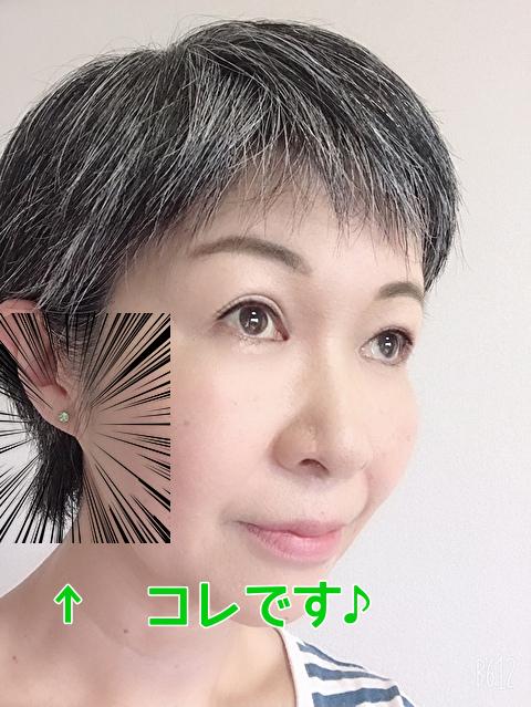 f:id:ikinarinurikabe:20190714090200j:plain