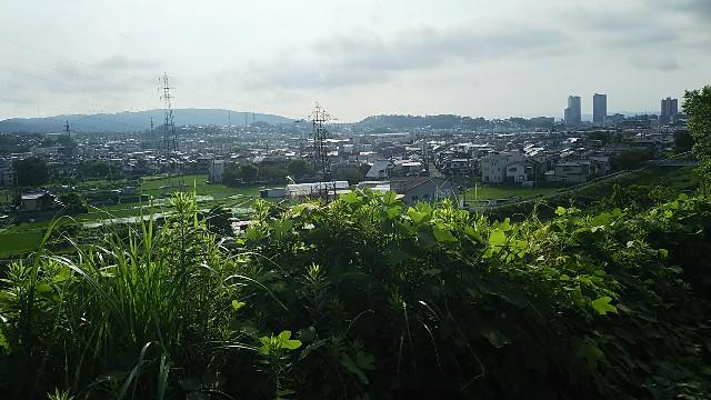 f:id:ikioi99:20170702101042j:image