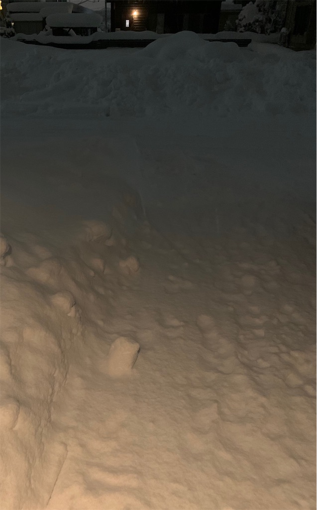 f:id:ikiruikeru43:20201217232459j:plain