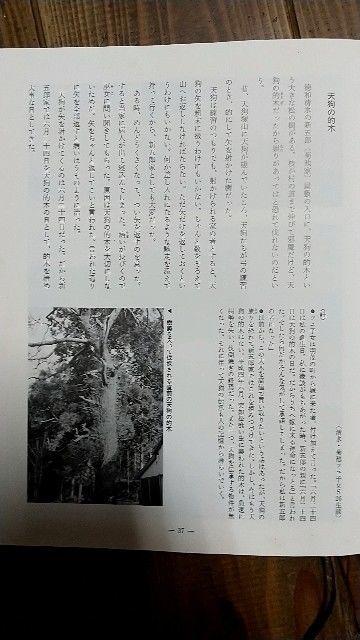f:id:ikkakinokinoha0401:20210511221220j:image