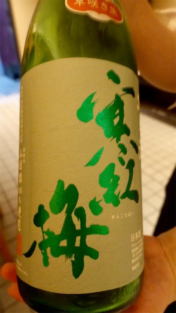 f:id:ikkoshinagawa:20190321193725j:image