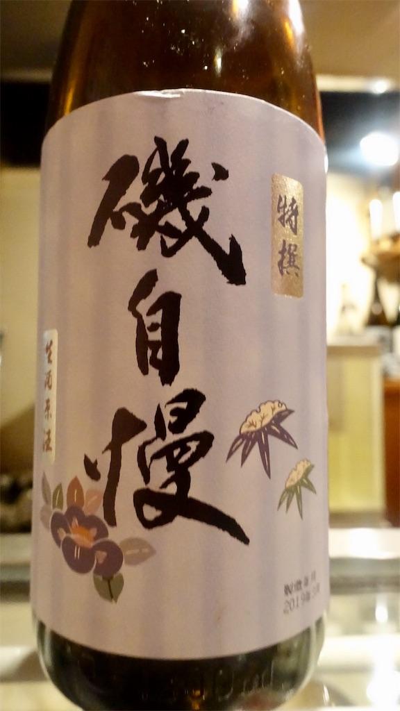 f:id:ikkoshinagawa:20190413205544j:image