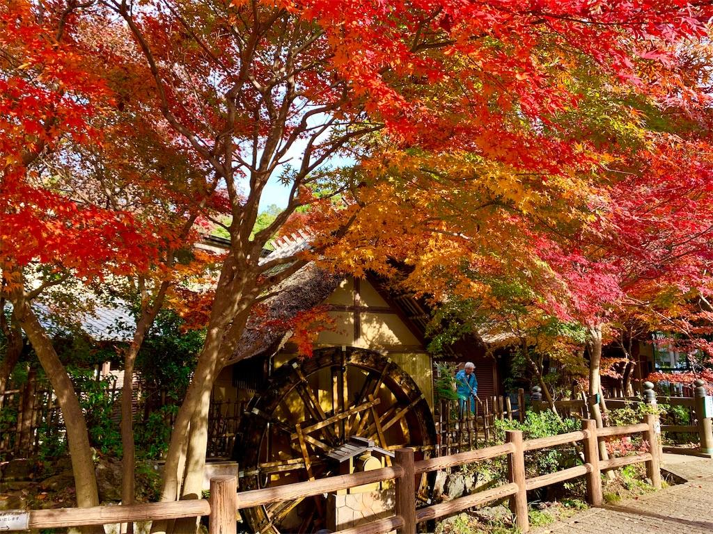 f:id:ikkoshinagawa:20201212133404j:image