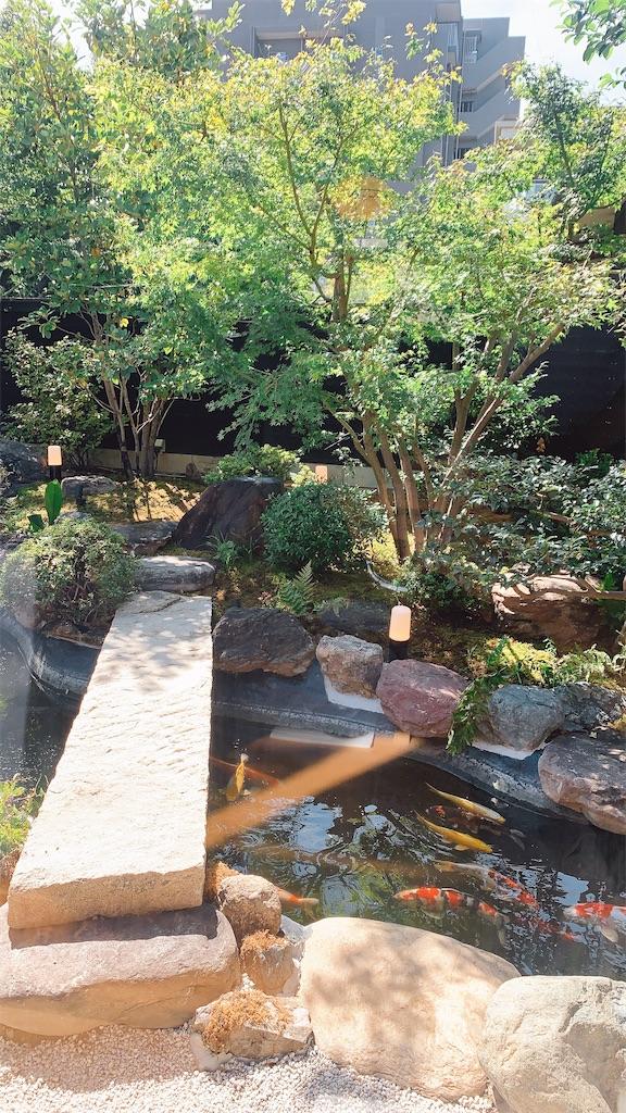 f:id:ikkoshinagawa:20210910162517j:image