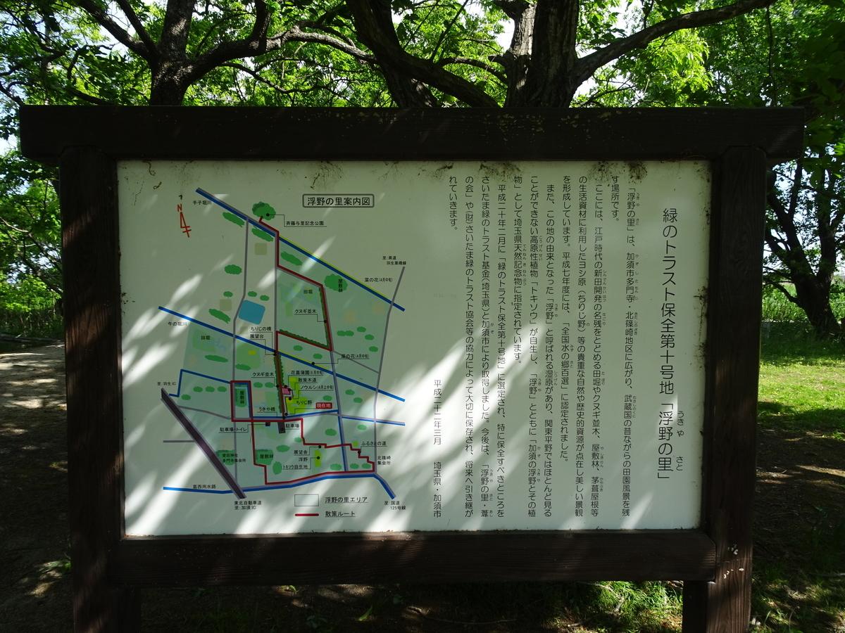 f:id:iko-san:20210505112955j:plain