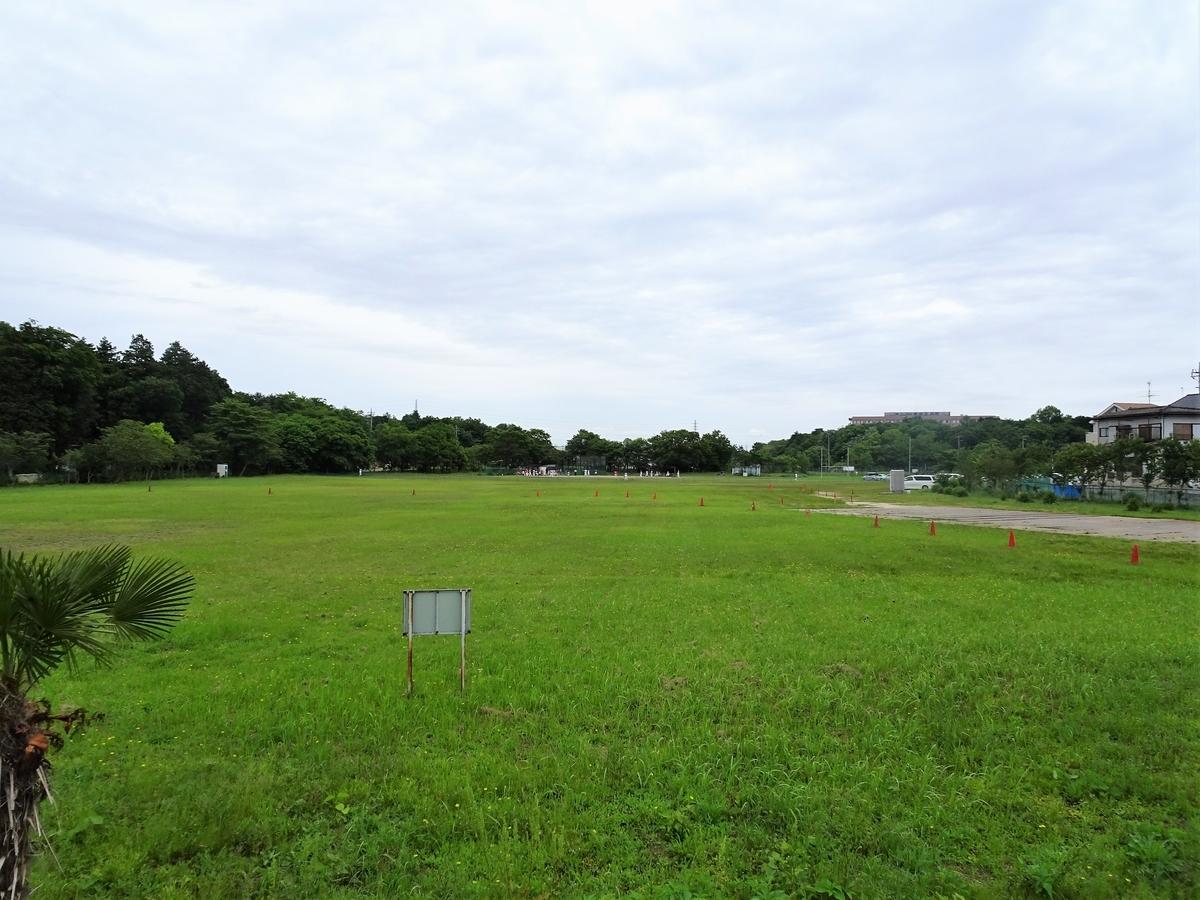 f:id:iko-san:20210614192947j:plain