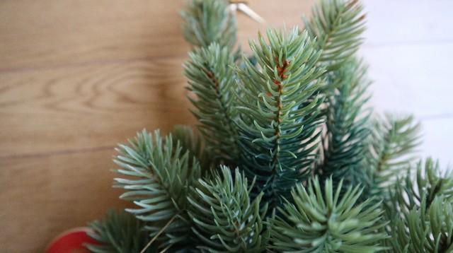 壁掛け式クリスマスツリー、枝部分のアップ写真