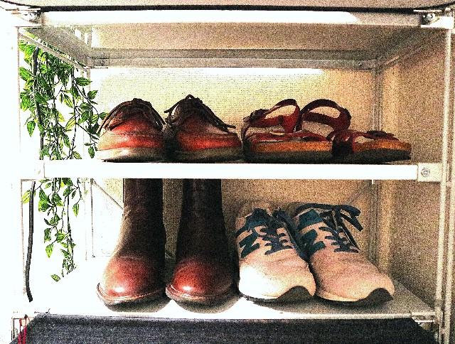 棚に並んだ4足の靴