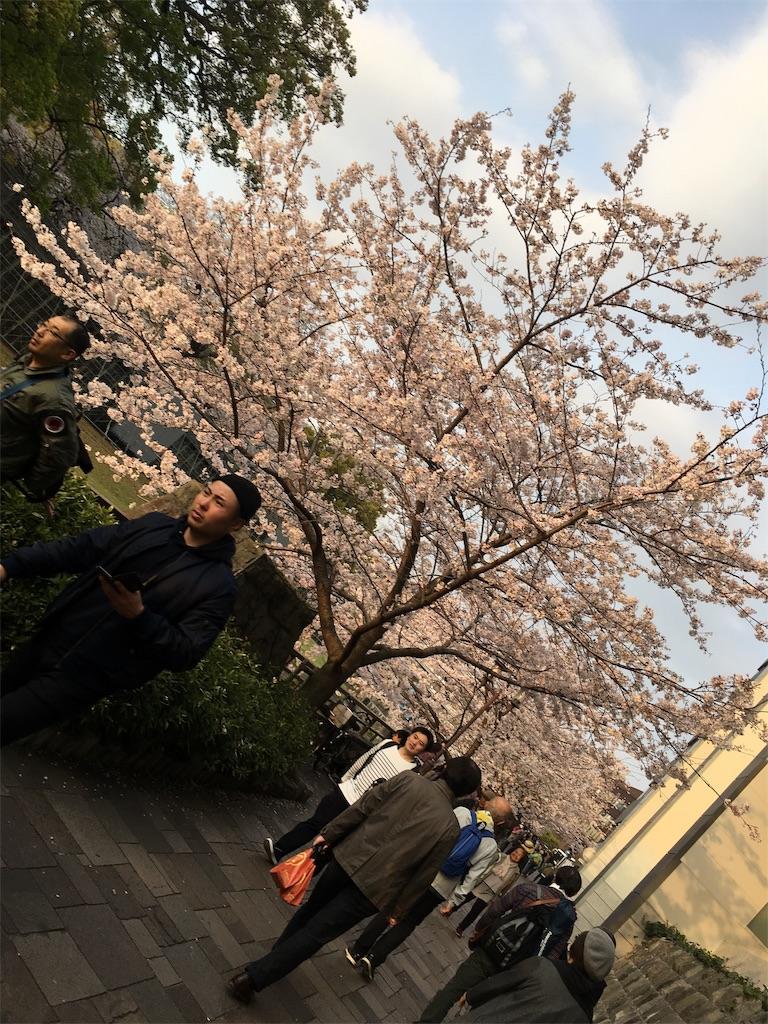 f:id:ikukofujimura:20190403004743j:image