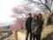 Tsukuba plum blossom festival 2011/02/26