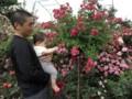 with my son @ Fujisawa rose garden, Tsukuba 2013/06/01