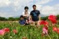 Flower field @ Shimotsuma 2018/05/19