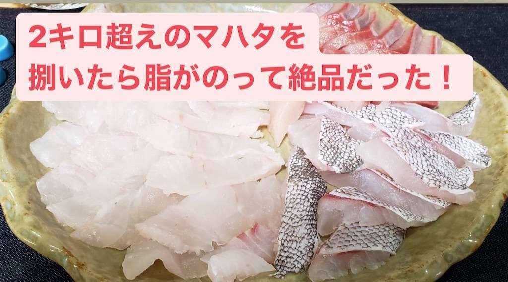 f:id:ikuo00uk:20210101155005j:image