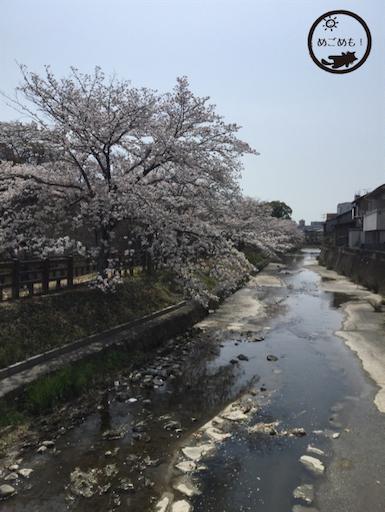 f:id:ikura_chan:20180403230613p:image