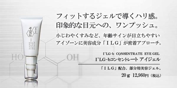 f:id:ilg-b:20170708223058j:plain