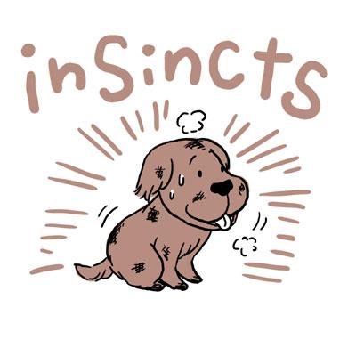 insincts 本能 英語