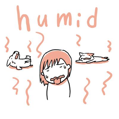 humid 蒸し暑い 英単語