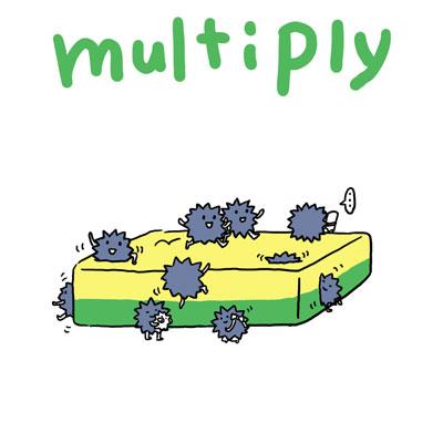 multiply 増やす 英語