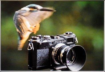 f:id:ilovephoto:20120218142636j:image:right