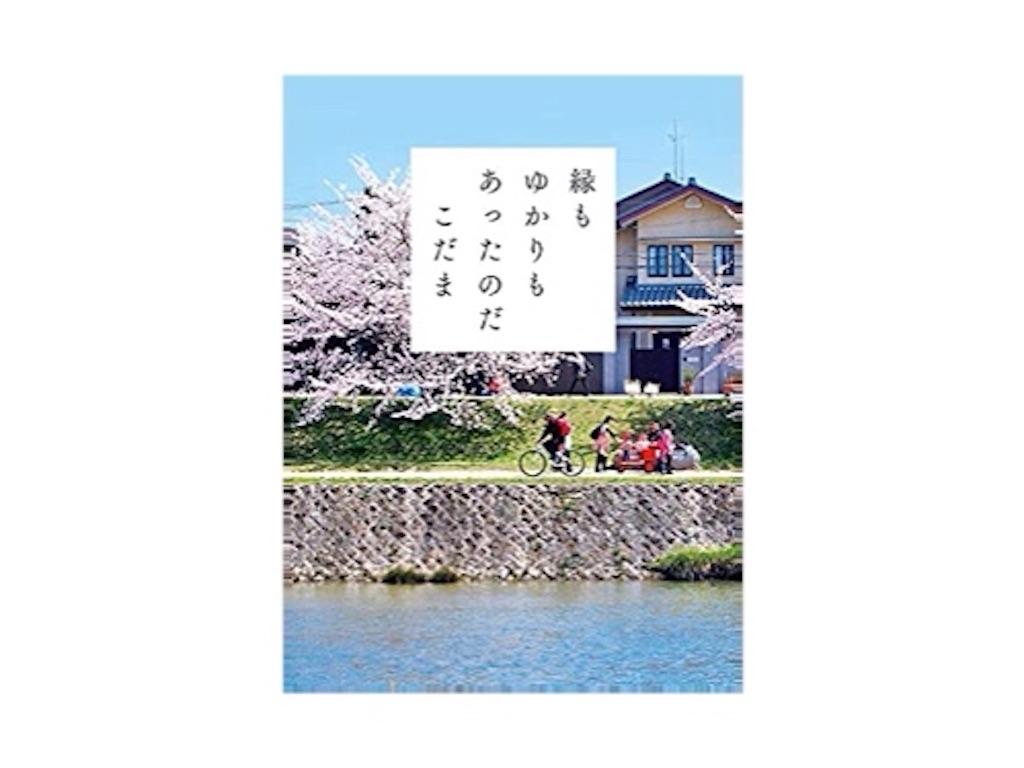 f:id:im72nattsu:20210502145616j:image