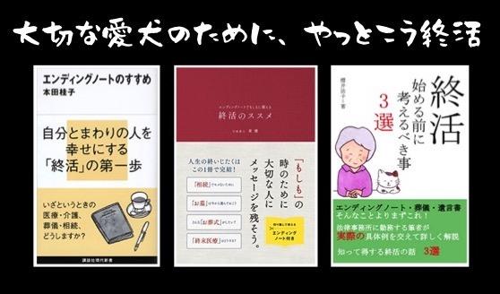 f:id:im_kurosuke:20201016064829j:plain