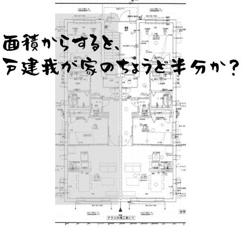 f:id:im_kurosuke:20201020083246j:plain
