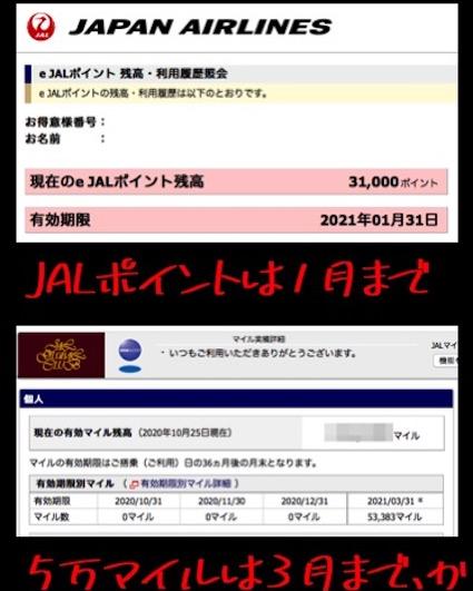 f:id:im_kurosuke:20201025073121j:plain