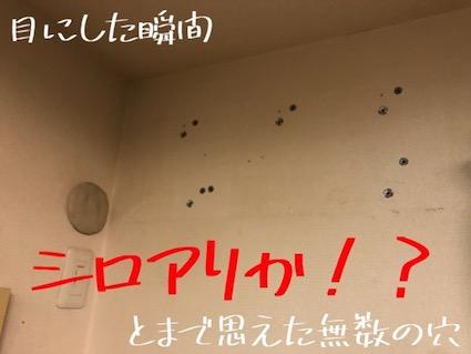 f:id:im_kurosuke:20201027222702j:plain
