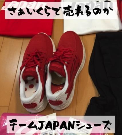 f:id:im_kurosuke:20201104194211j:plain