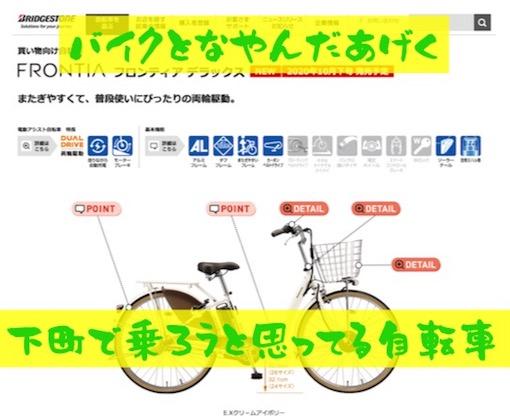 f:id:im_kurosuke:20201106131803j:plain