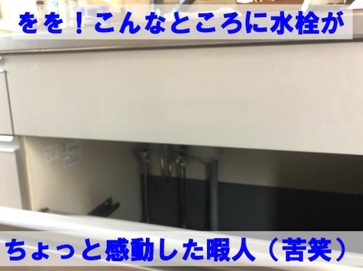 f:id:im_kurosuke:20201109114732j:plain
