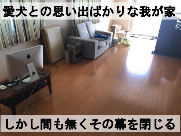 f:id:im_kurosuke:20201110225351j:plain